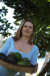 Avocado Harvest in Kenya