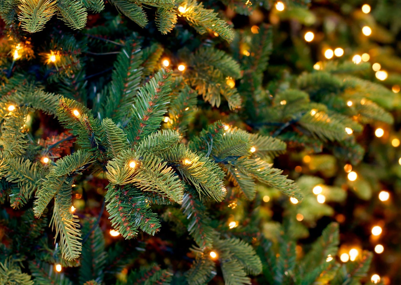 Christmas Featured Image Rs