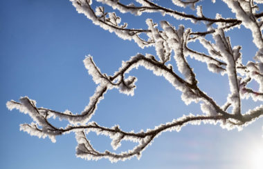winter blues Liz Earle Wellbeing