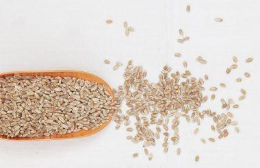 spelt-flour-menopause-liz-earle-wellbeing-feature