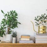 air cleaning housePlants Liz Earle Wellbeing