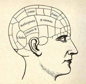 brain power foods Liz Earle Wellbeing