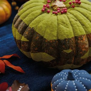 painted pumpkin idea liz earle wellbeing