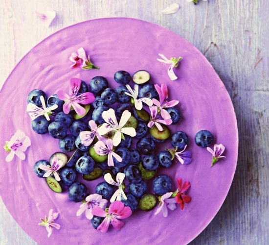 sugar-free cake recipe for blueberry lemon moussecake
