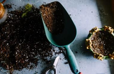 Gardening trough and earth, liz earle wellbeing
