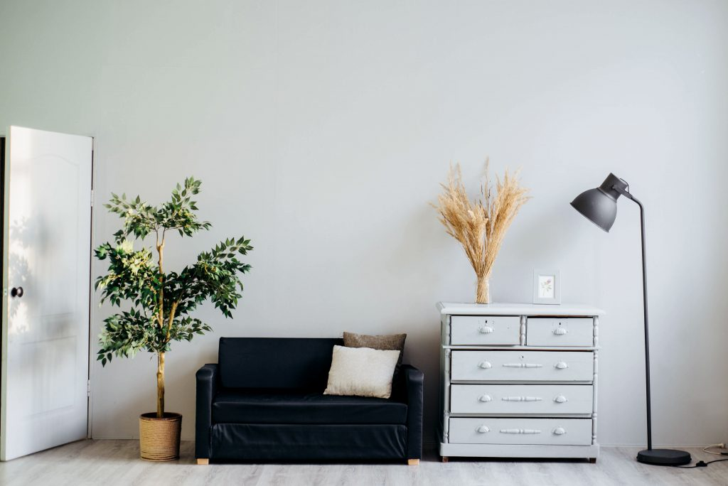 tidy declutter your home